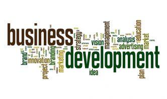 effective business development strategies
