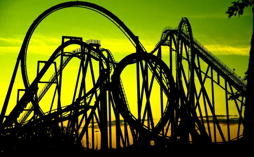 Seven Ways Business Owners Can Ride Today's Roller Coaster